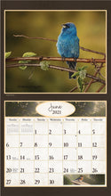 Load image into Gallery viewer, 2021 Birds in Nature Wall Calendar