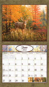 2021 Deer in the Woods Wall Calendar