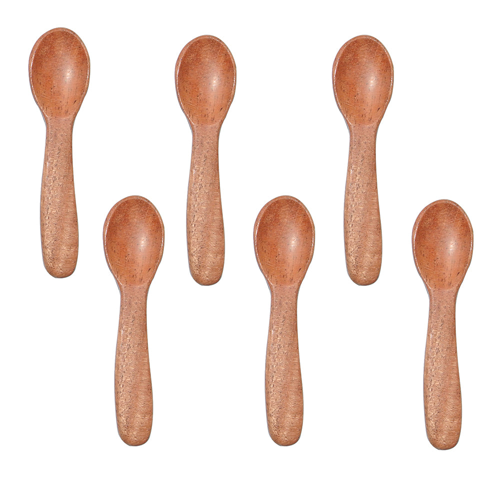 Wooden Masala Spoon (Set of 6) Compact for Salt, Pickle, Turmeric, Spices