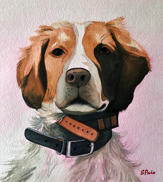 Portrait of a dog wearing two collars