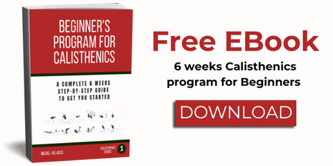 Beginner's program for Calisthenics Ebook 3d photo