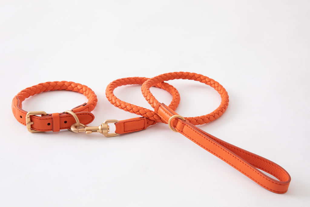 Duepuntootto Tangerine Orange Ferdinando Dog Leash Italian Braided Leather