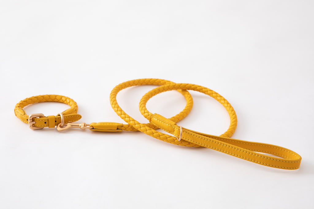 Duepuntootto Tuscan Yellow Ferdinando Dog Leash Italian Braided Leather