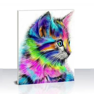 Paint by Numbers Kit -  Cute Colorful Cat