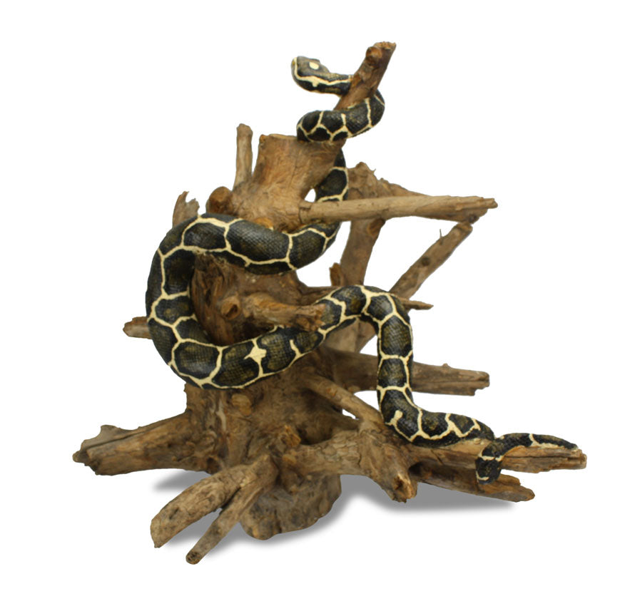Handmade Snake Sculpture on Natural Wooden Tree Stand, Very Large 60cm Size - farangshop-co
