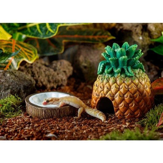 Exo Terra Coconut Water Dish for Reptiles