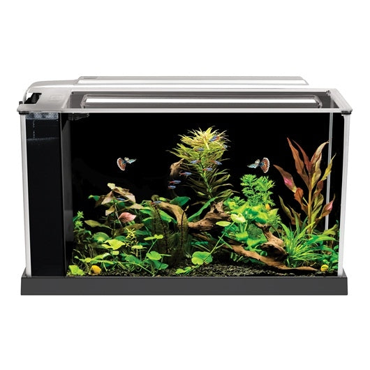 Fluval Spec 19L Aquarium (Black)