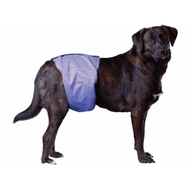 Pooch Pad - PoochPants Male Dog Diaper Wraps / Belly Bands (S-XL)