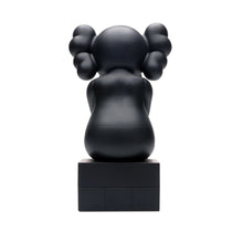 Load image into Gallery viewer, Kaws Passing Through Open Edition (black)