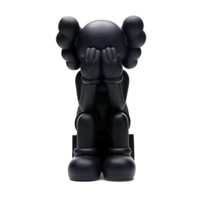 Kaws Passing Through Open Edition (black)