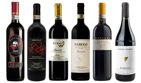SAMPLE BAROLO & BARBARESCO WINES - 6 bottles Shipping Included