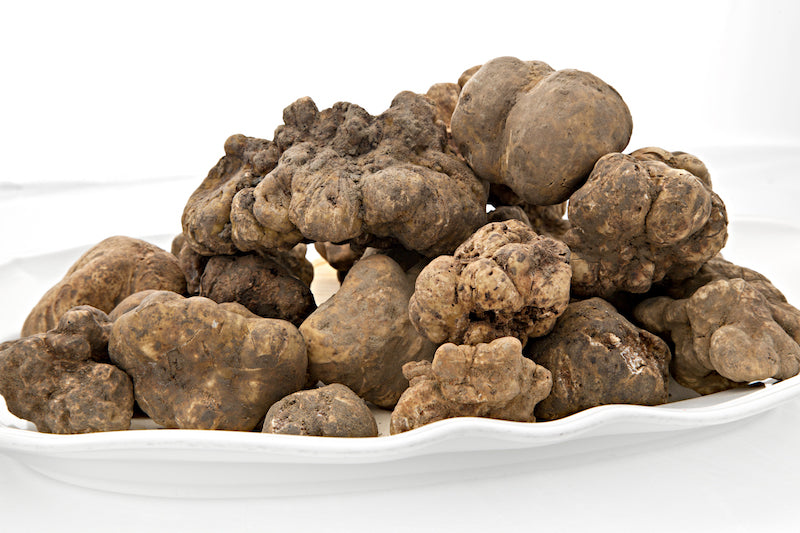 200g (7 oz.) ALBA WHITE TRUFFLES Shipping Included