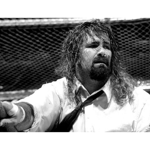 *Signed* Mankind Hell in a Cell 8x10  Promo