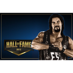 *Signed* Diesel Hall Of Fame 11 x 17 Poster