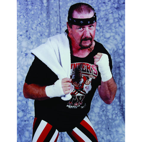 *Signed* Terry Funk Fighter Pose 8 x 10 Promo
