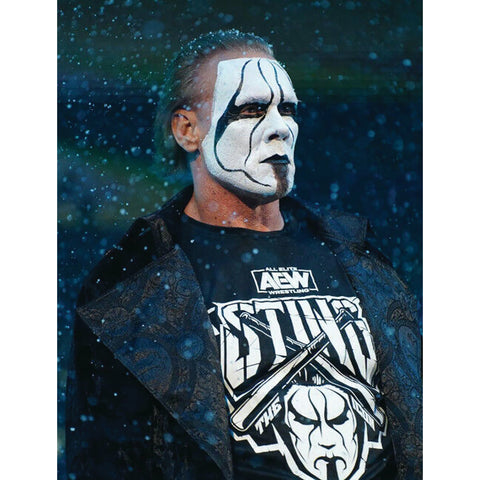 *Signed* Sting Entrance 8 x 10 Promo