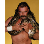 *Signed* Jake The Snake Yellow Promo