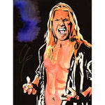 * Signed * Chris Jericho Schamberger 18 X 24 Art Promo