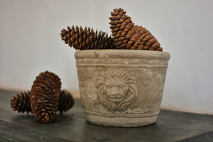 Cement Lion Planter