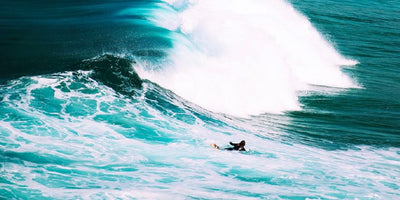 Surfing Into Greater Sustainability