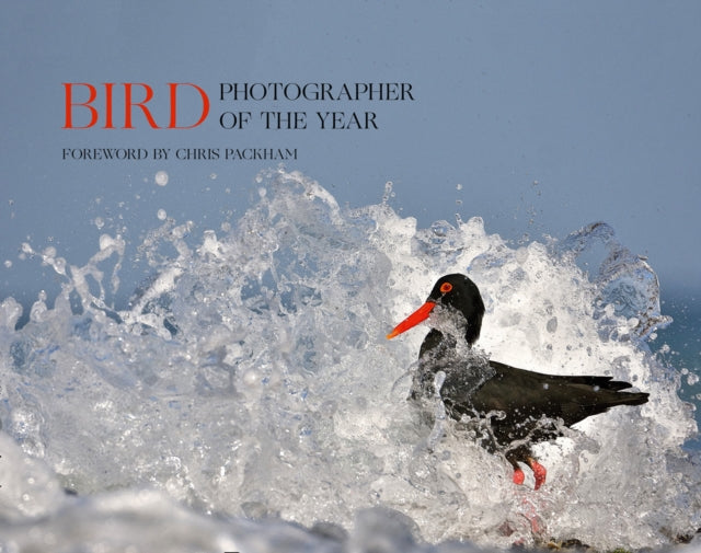 Bird Photographer of the Year : Collection 5-9780008336202