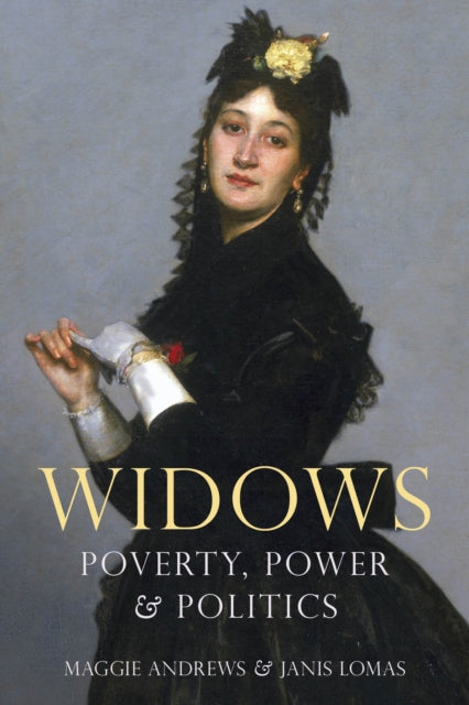 Widows : Poverty, Power and Politics-9780750990103