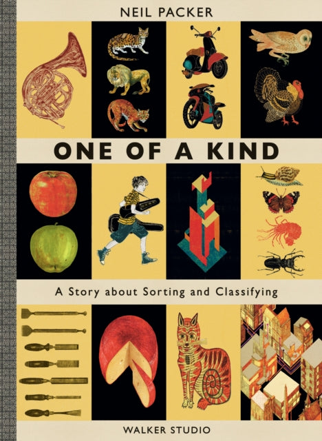 One of a Kind : A Story About Sorting and Classifying-9781406379228