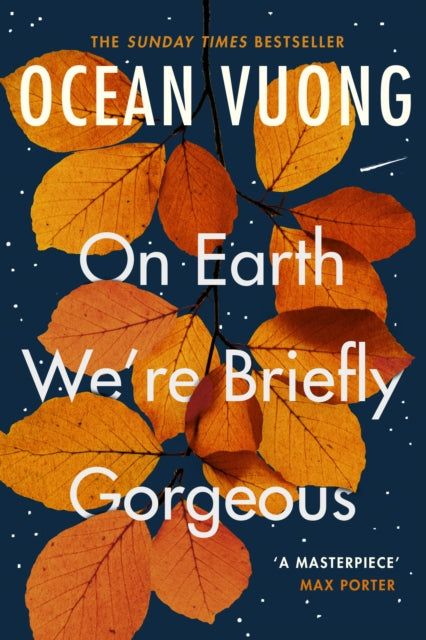 On Earth We're Briefly Gorgeous-9781529110685