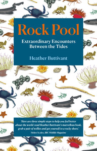 Rock Pool: Extraordinary Encounters Between the Tides : A Life -Long Fascination told in Twenty-Four Creatures-9781912836123