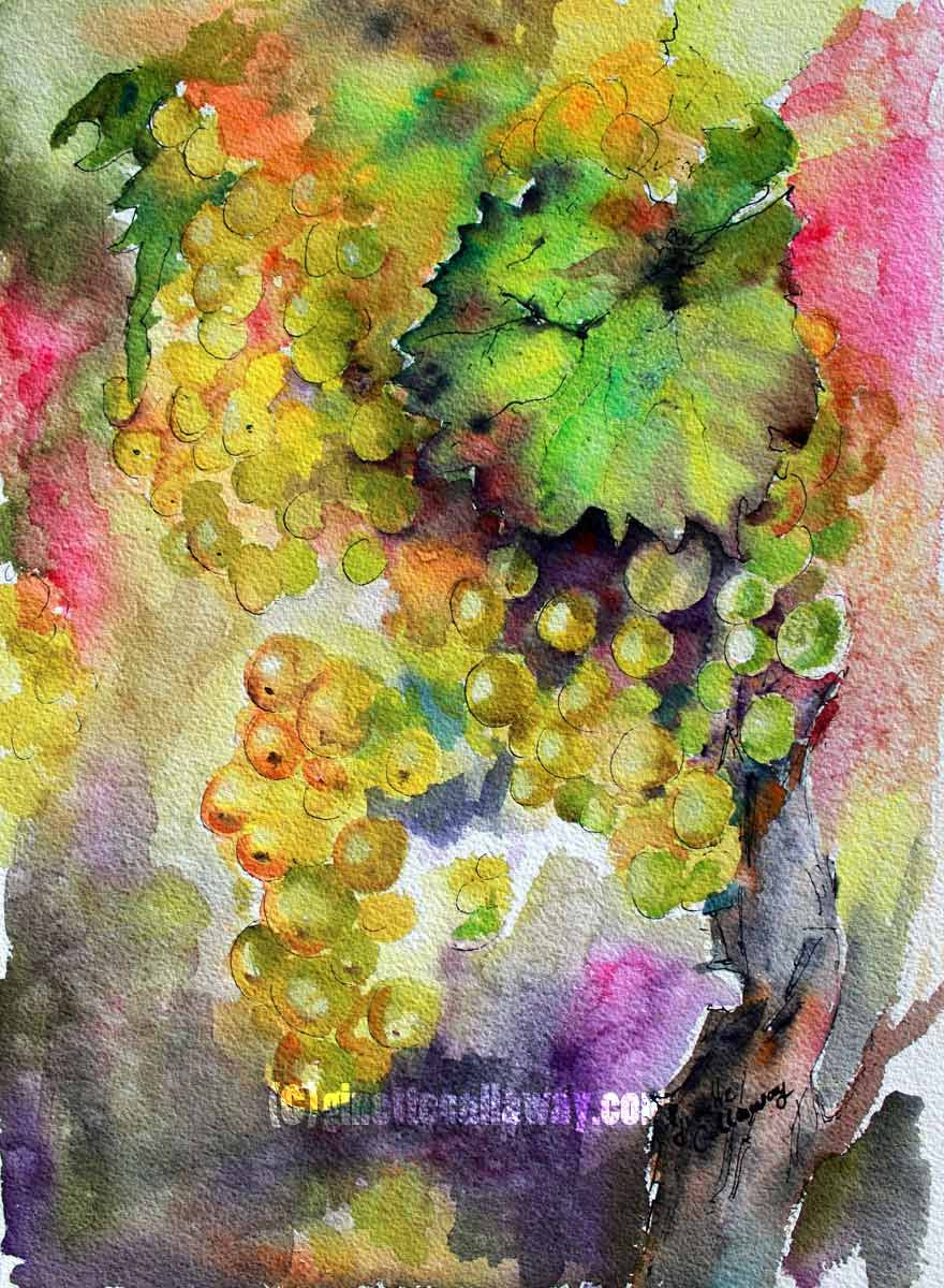 White Wine Grapes Original Watercolor
