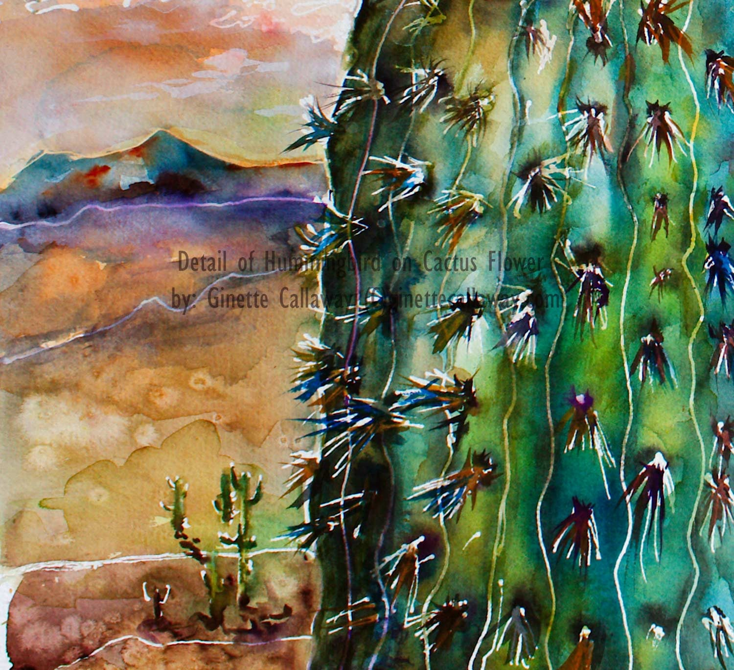 SOLD Hummingbird and Cactus Flower Watercolor Original , Watercolor - Ginette Fine Art, The Art of Ginette Callaway  - 5
