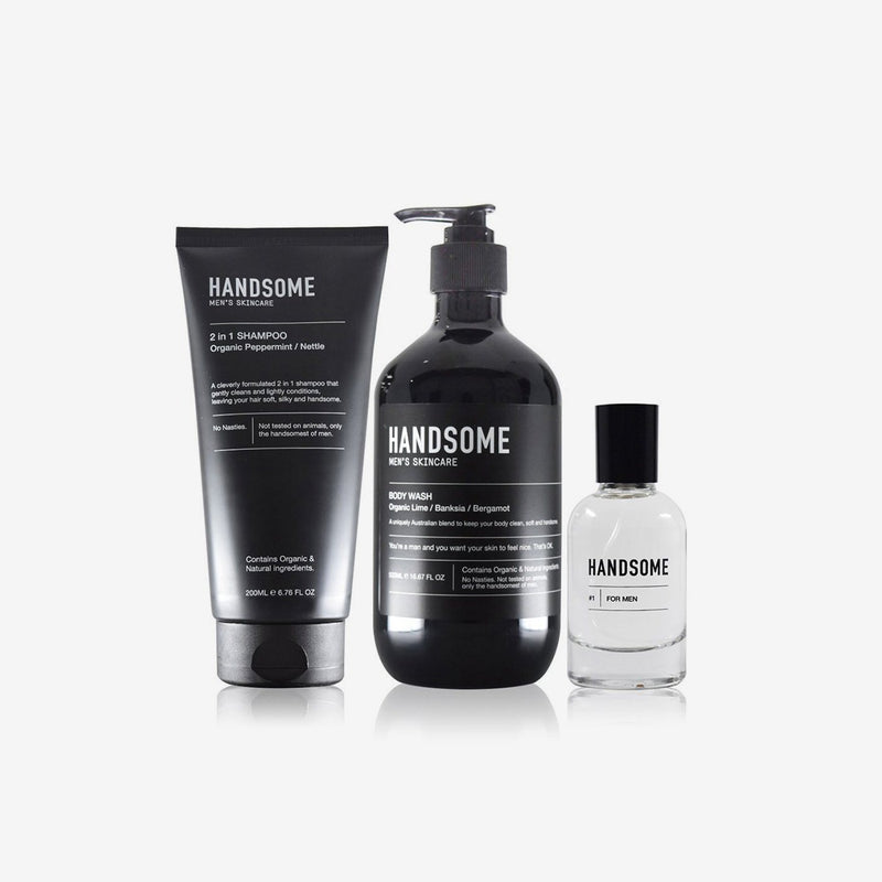 Handsome Refresh Collection Body Kit Handsome