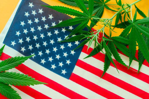 Federal Government Needs Weed Tax