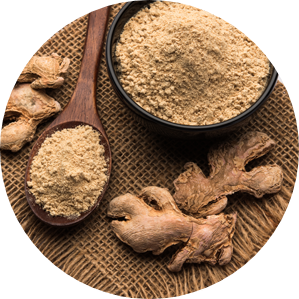 Ginger -Zingiber officinale