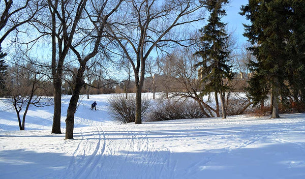 Kinsmen Park ski trails