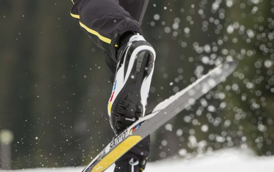 Salomon skin skis