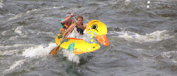 paddling inflatable duck
