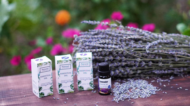 What is a Lavender oil and How To Use it?