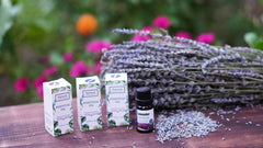 100% Pure Lavender Essential Oil (Pack of 2)