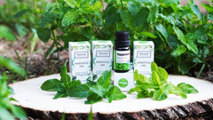 100% Pure Peppermint Essential Oil (Pack Of 2)