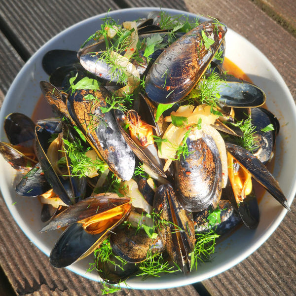 Cornish Mussels cooked with Ginger Kombucha