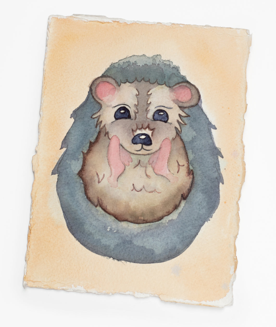 Brush Babies Paint with Me Baby Hedgehog Watercolor