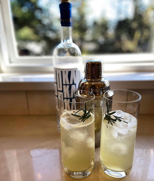 Vodka Rosemary and Honey Collins