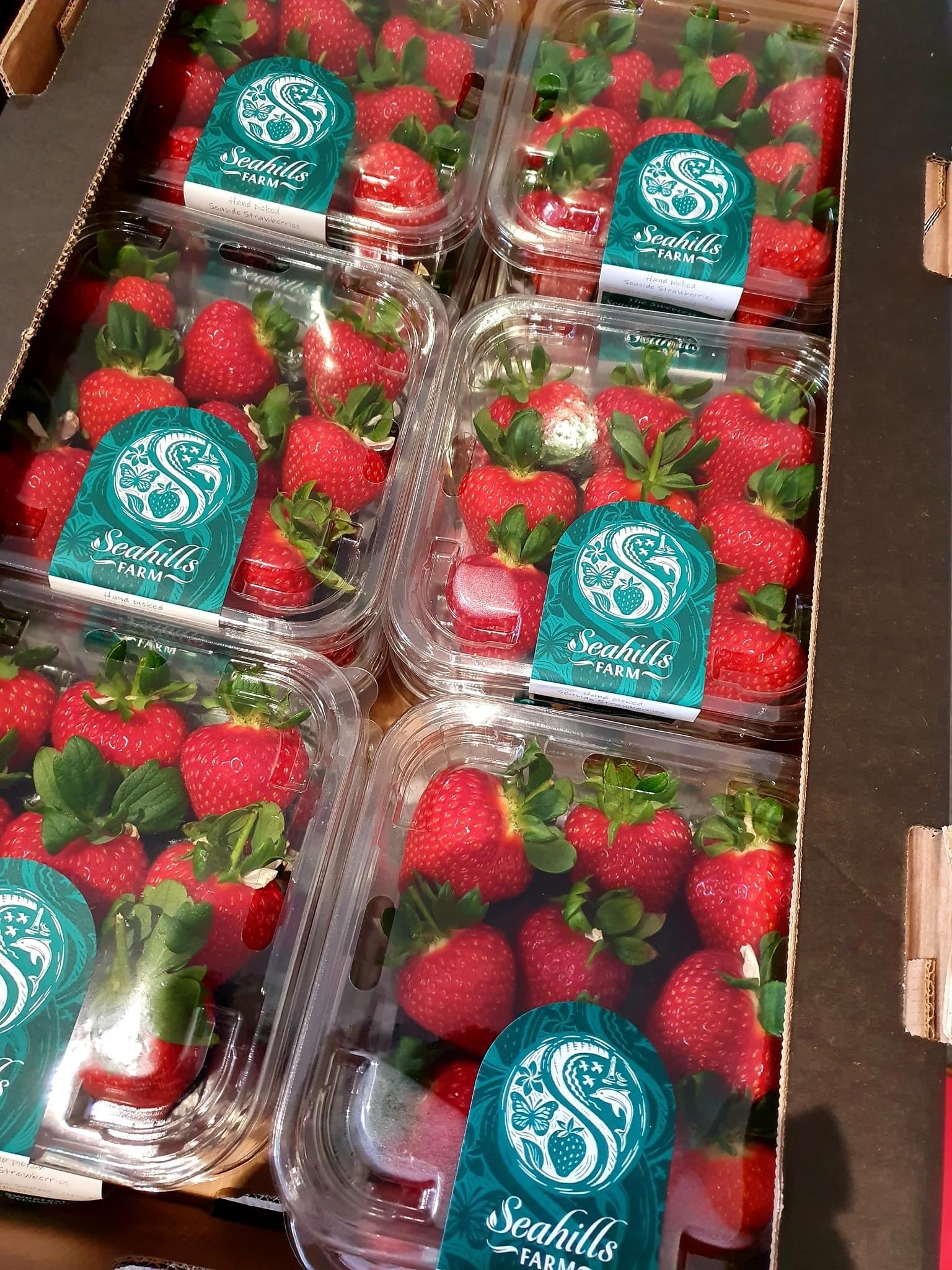 Seahill Premium Strawberries