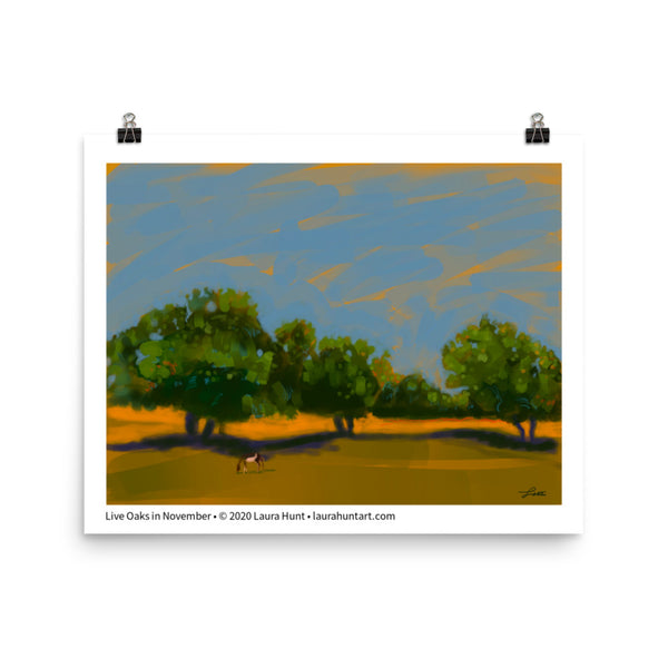 Live oak trees in a green and gold landscape against a blue sky. By Laura Hunt