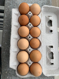 Eggs, 1 dozen, Local