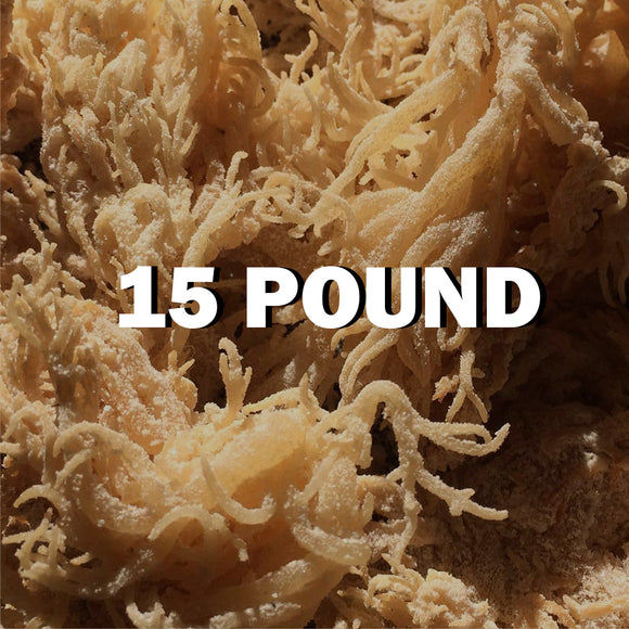 Raw Sea moss 15Lbs - SupherbBotanicals