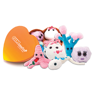 Giant Microbes | Heart Warming Gift Box