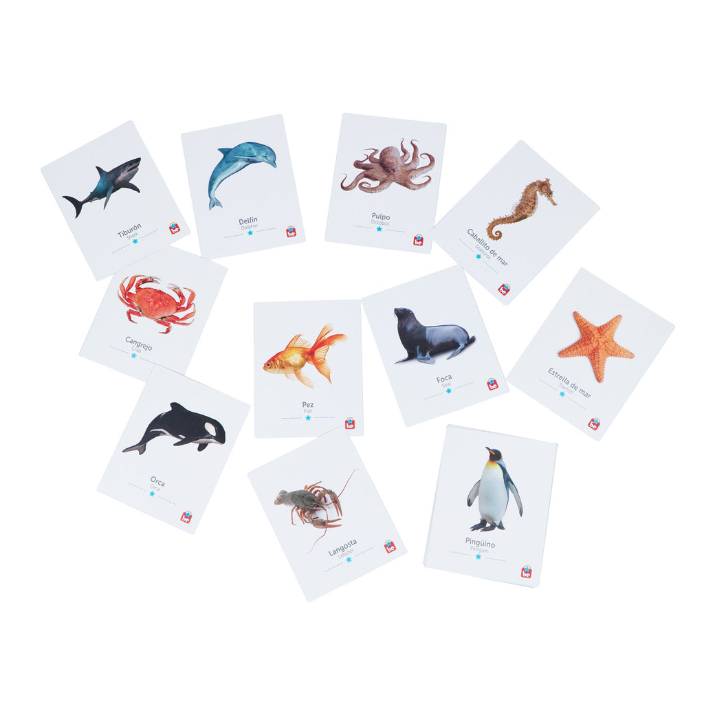 Flash Cards Animales del Agua - Tool-be