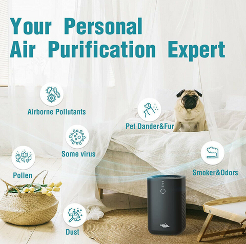 Membrane Solutions Large Room Air Purifier HEPA Filter Air Cleaner your personal air purification system, pollen, some viruses, smoke and odors, dust, pet dander and fun, airborne pollutants